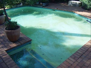 swimming pool paving project before